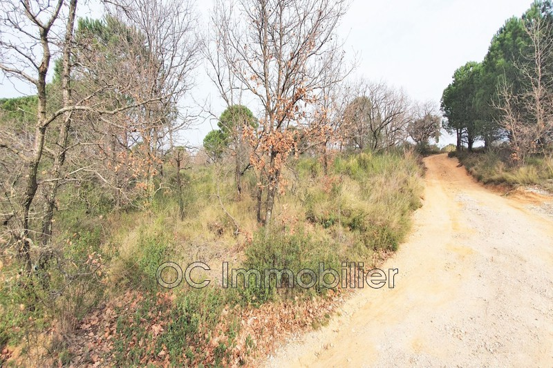 Photo Terrain agricole Ortaffa   to buy terrain agricole   8522m²