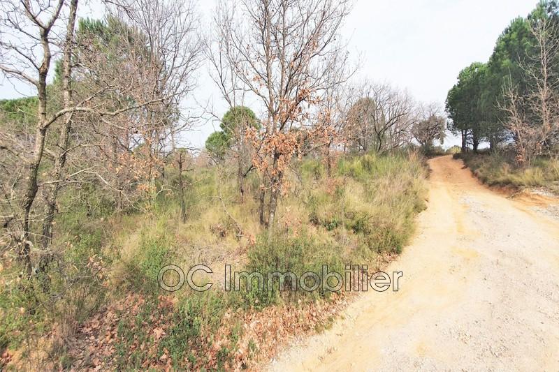 Photo Terrain agricole Ortaffa   achat terrain agricole   8522m²