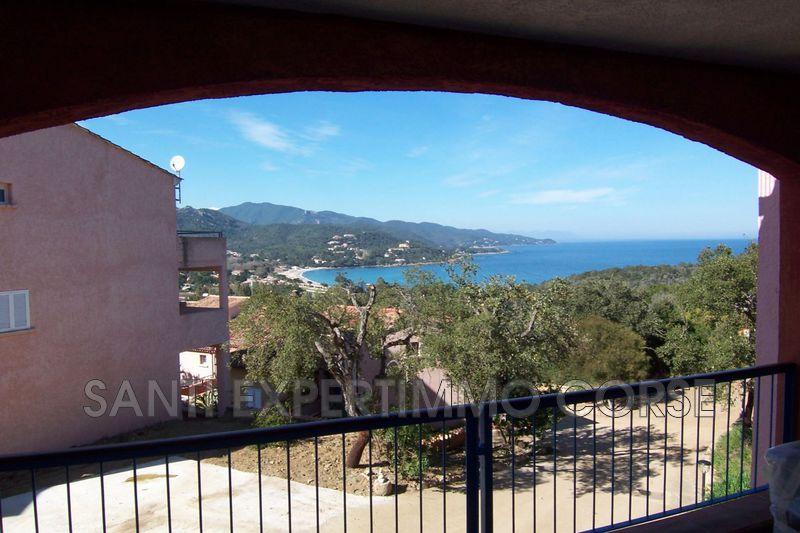Appartement Conca Proche plages,   achat appartement  3 pièces   53m²