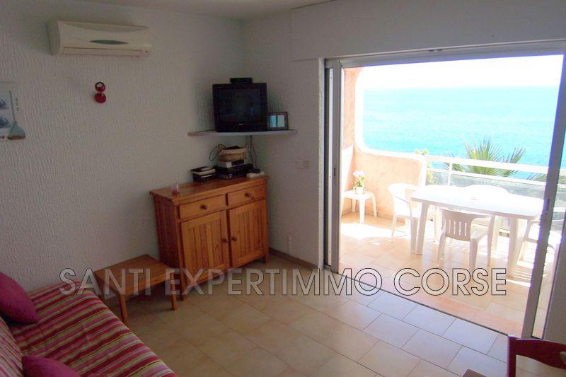 Photo n°3 - Vente appartement Conca 20135 - 129 600 €