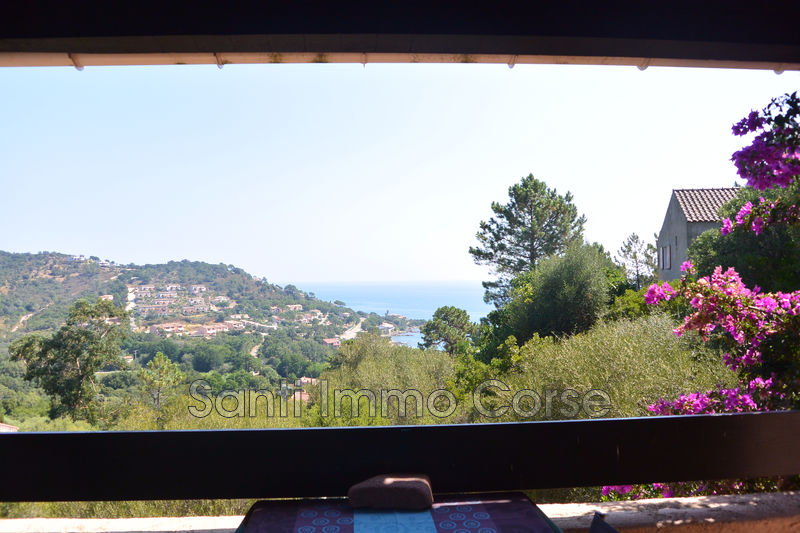 Photo n°4 - Vente Maison villa Conca 20135 - 350 000 €