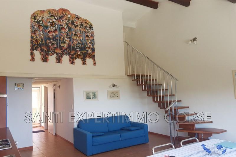 Appartement Favone Proche centre mer,   achat appartement  3 pièces   50m²
