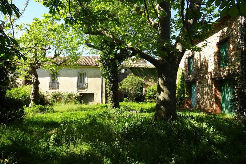 Photo Maison Clermont-l'Hérault Languedoc,   achat maison  5 chambres   311m²
