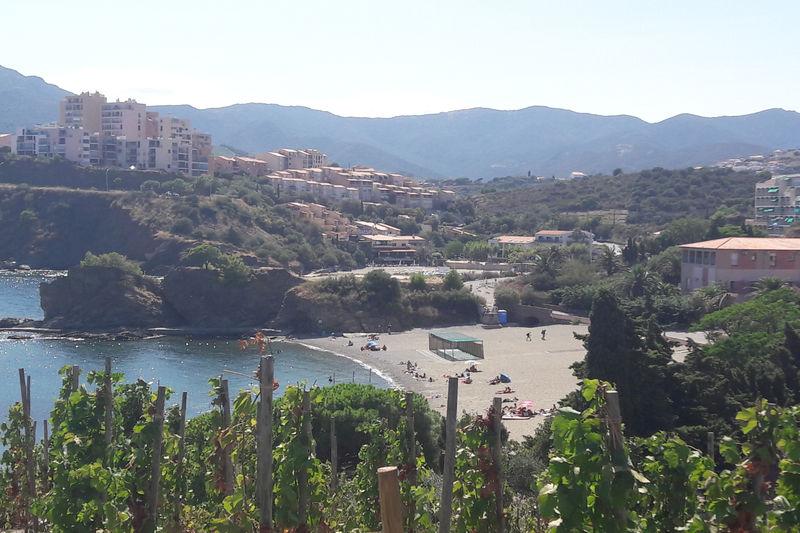 Photo Appartement Banyuls-sur-Mer Languedoc,   achat appartement  2 pièces   40m²