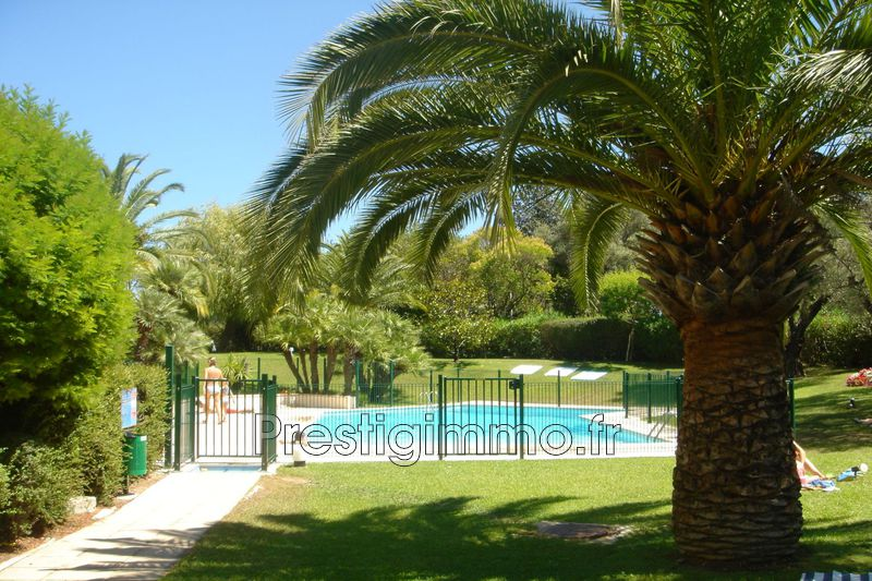 Photo Apartment Golfe-Juan Centre-ville et plage,  Rentals apartment  1 room   25 m²