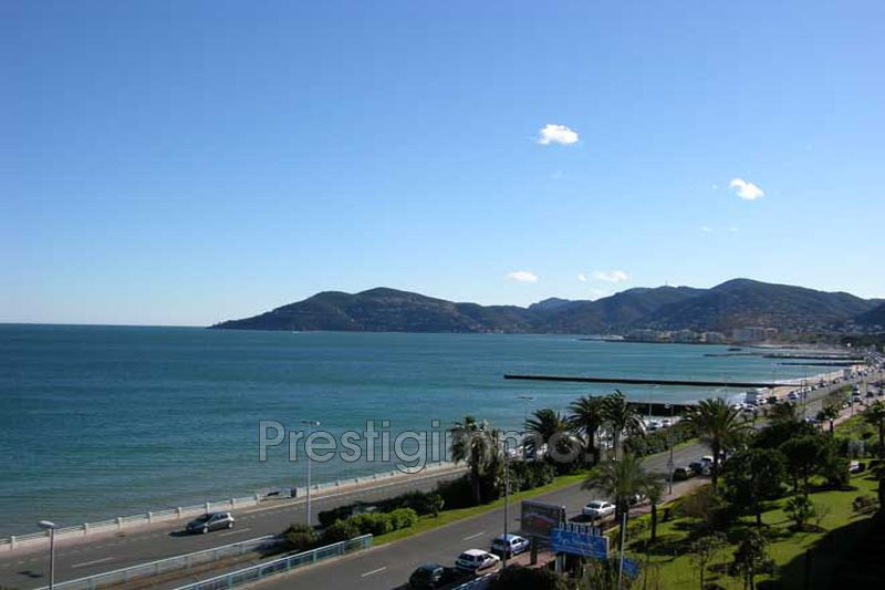 Photo Appartement Mandelieu-la-Napoule Front de mer,  Location appartement  1 room   28 m²