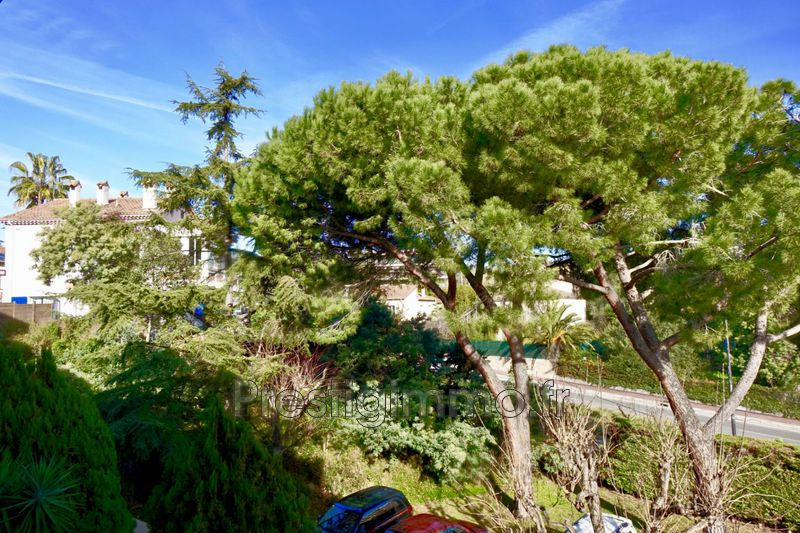 Photo n°2 - Location appartement Cannes 06400 - 980 €