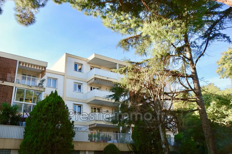 Appartement Cannes Proche ville au calme,  Location appartement  2 rooms   53 m²