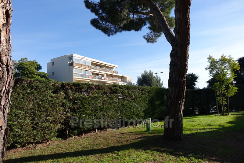 Photo n°12 - Location appartement Cannes 06400 - 980 €