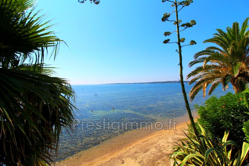 Apartment Cannes Palm beach,  Rentals apartment  2 rooms   44 m²