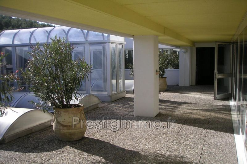 Sophia Antipolis St bernard,  Occupational    20 m²