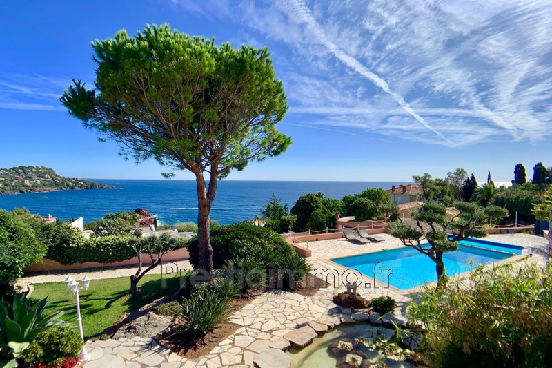 Property Théoule-sur-Mer Bord de mer,   to buy property  4 bedroom   323 m²