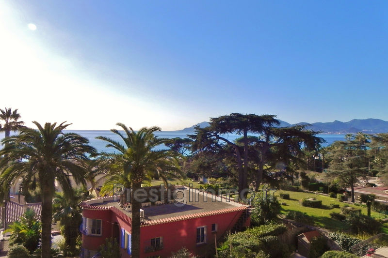 Photo n°7 - Vente appartement Cannes 06400 - 258 000 €