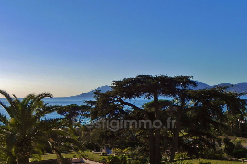 Photo n°2 - Vente appartement Cannes 06400 - 258 000 €