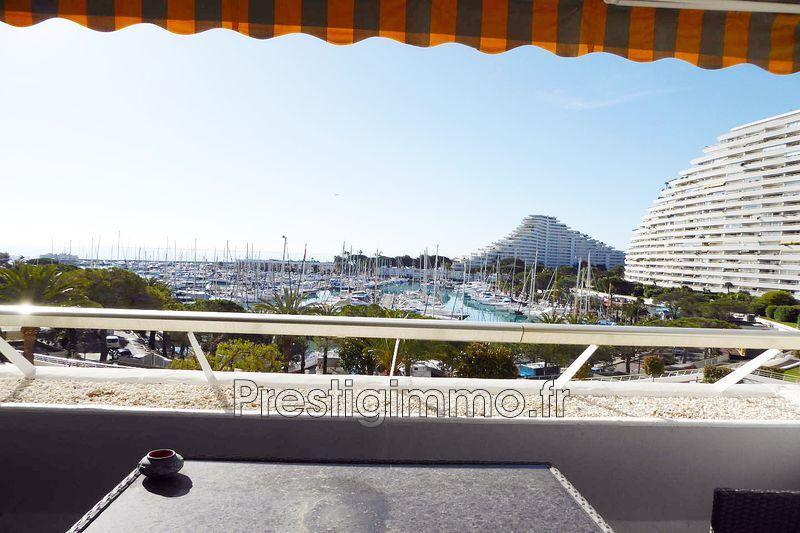 Photo Appartement Villeneuve-Loubet Front de mer,   achat appartement  1 pièce   31m²