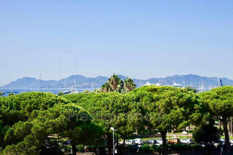 Appartement Cannes Proche plages,   achat appartement  3 pièces   87m²