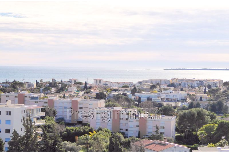 Photo Apartment Antibes Pierre delmasse,   to buy apartment  2 rooms   38 m²