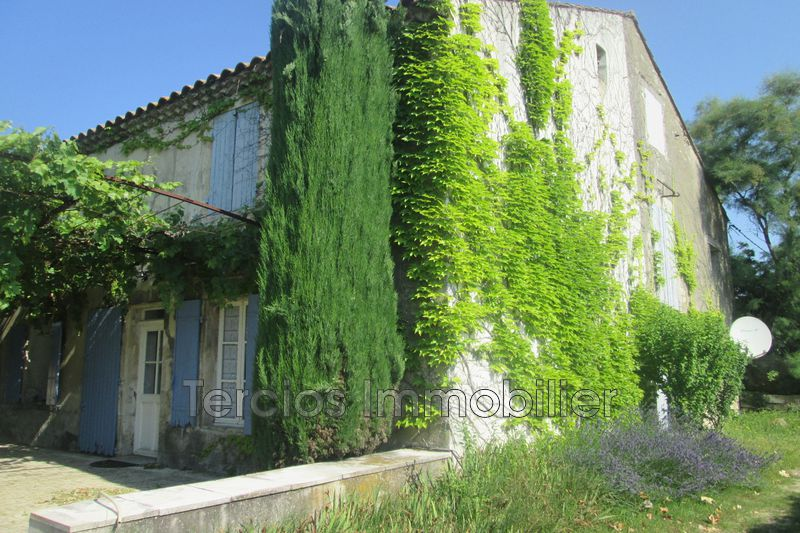 Mas Maillane Campagne,   to buy mas  5 bedrooms   230 m²