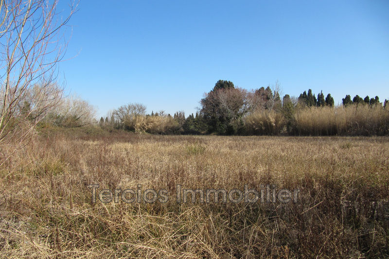 Photo n°4 - Vente terrain Saint-Rémy-de-Provence 13210 - 44 000 €
