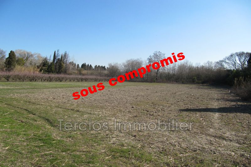Land Saint-Rémy-de-Provence Campagne,   to buy land   20000 m²