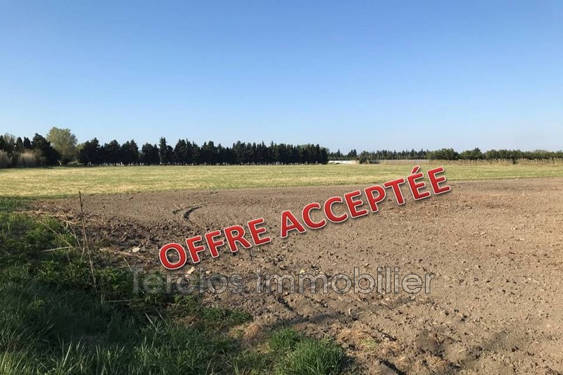 Land Eyragues Campagne,   to buy land   24547m²