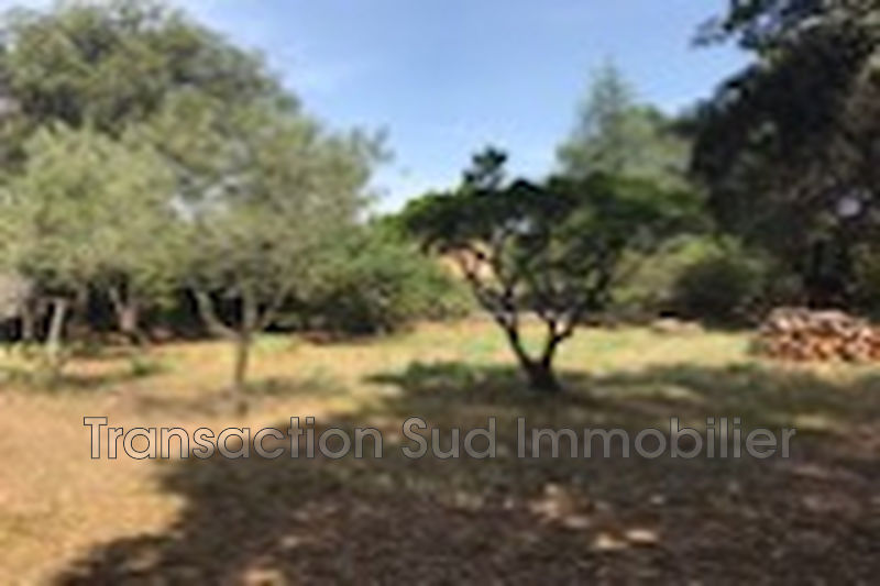 Photo Terrain Saint-Siffret   achat terrain   874 m²