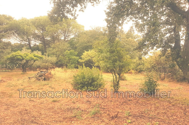 Photo Land Saint-Siffret   to buy land   874 m²