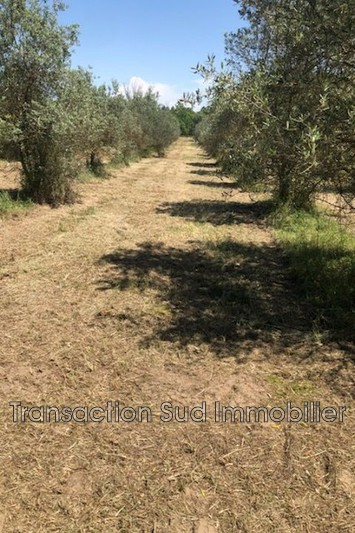 Photo Land Remoulins   to buy land   3998 m²