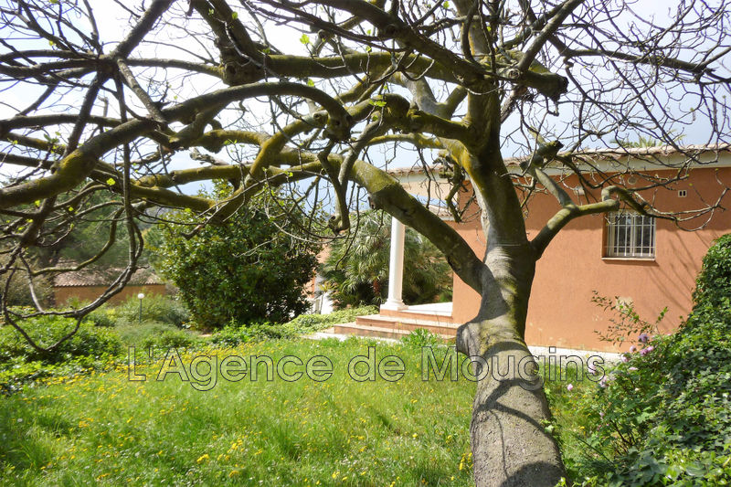Photo n°5 - Vente Maison villa Mougins 06250 - 785 000 €