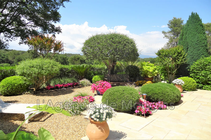 Photo n°1 - Vente Maison villa Mougins 06250 - 695 000 €