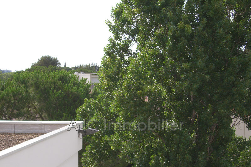 Photo n°7 - Location appartement Montpellier 34090 - 413 €