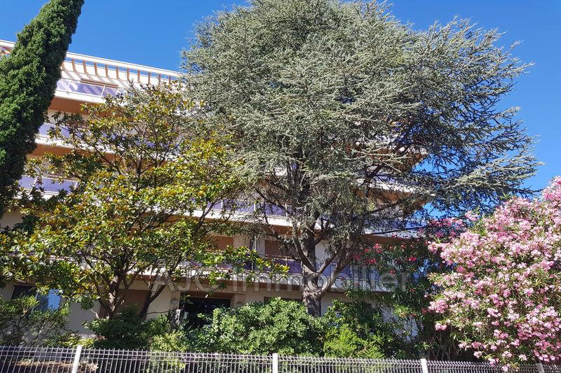 Photo n°2 - Vente appartement Montpellier 34070 - 252 000 €