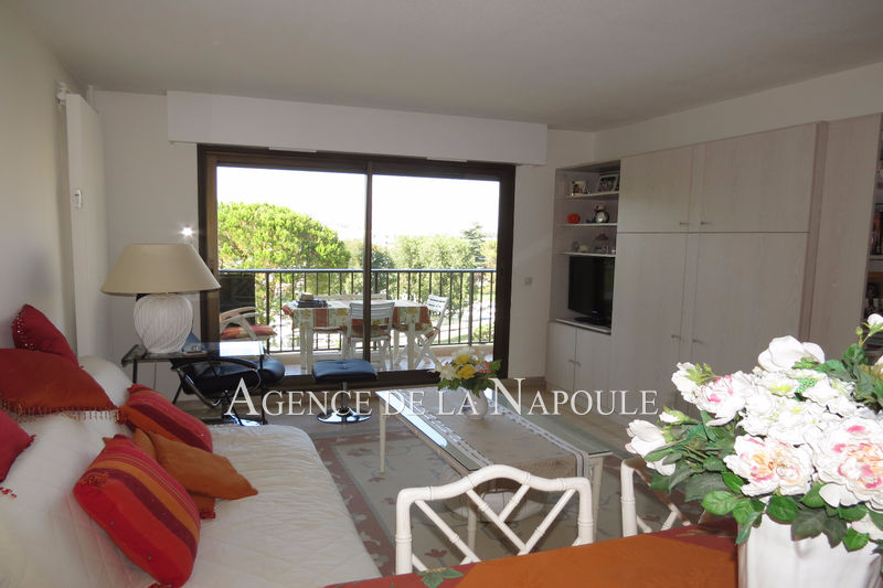 Photo Apartment Mandelieu-la-Napoule Cannes-marina,   to buy apartment  2 rooms   46 m²
