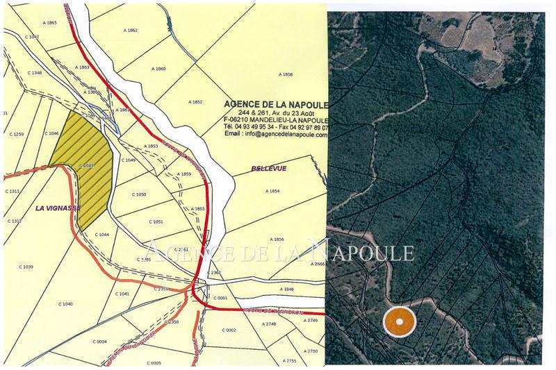 Photo Terrain Mandelieu-la-Napoule   to buy terrain   2000m²