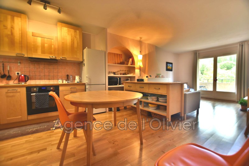Apartment Valbonne   to buy apartment  3 rooms   55 m²