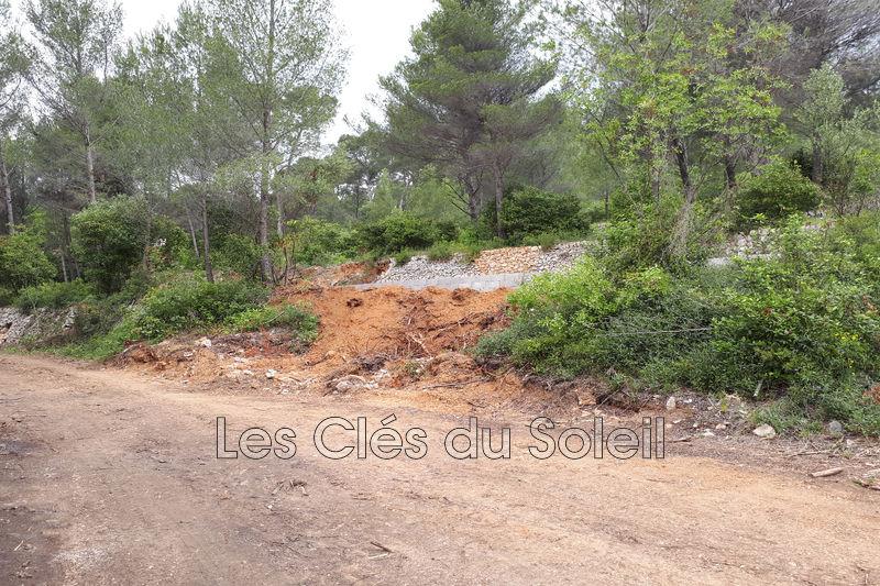 terrain  Ollioules   3120m² -