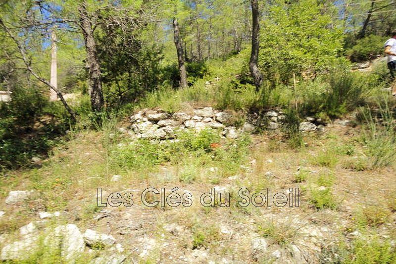 terrain  Cabasse   1200m² -