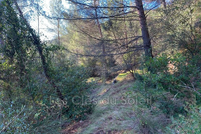 Photo n°3 - Vente terrain Cuers 83390 - 35 000 €