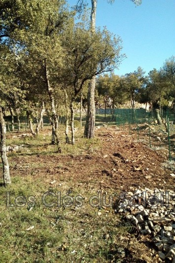 Photo n°3 - Vente terrain Brignoles 83170 - 125 000 €