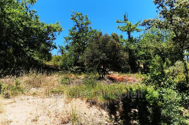 Photo n°5 - Vente terrain Brignoles 83170 - 125 000 €