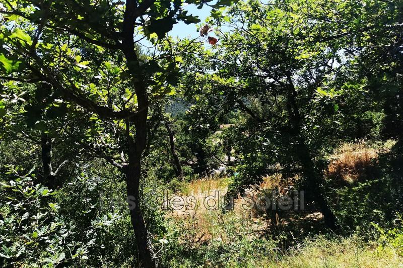 Photo n°6 - Vente terrain Brignoles 83170 - 125 000 €