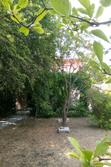 Vente Maisons - Villas Le Luc Photo 2