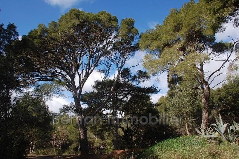 Photo Terrain de loisirs Espira-de-l'Agly   achat terrain de loisirs   3689m²