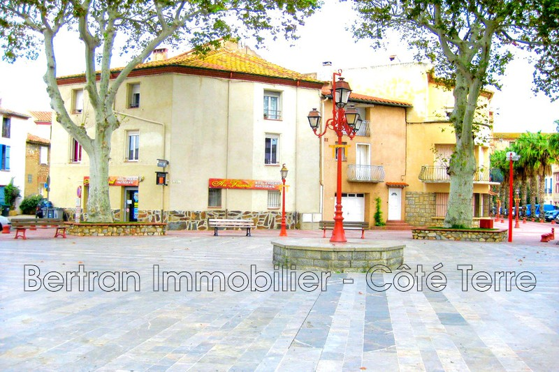 Photo House Saint-Hippolyte   to buy house  2 rooms