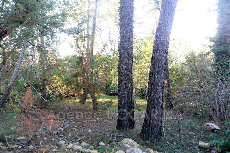 Photo n°1 - Vente terrain Valbonne 06560 - 280 000 €