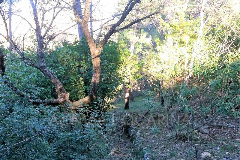 Photo n°1 - Vente terrain Valbonne 06560 - 255 000 €