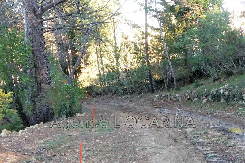Photo n°3 - Vente terrain Valbonne 06560 - 255 000 €