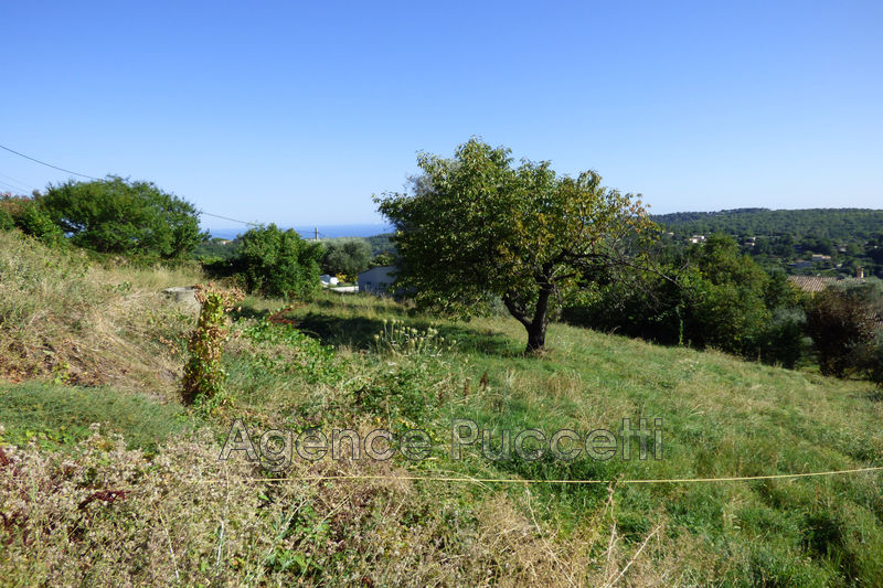 Photo Terrain Vence Hauteurs,   achat terrain   1215 m²