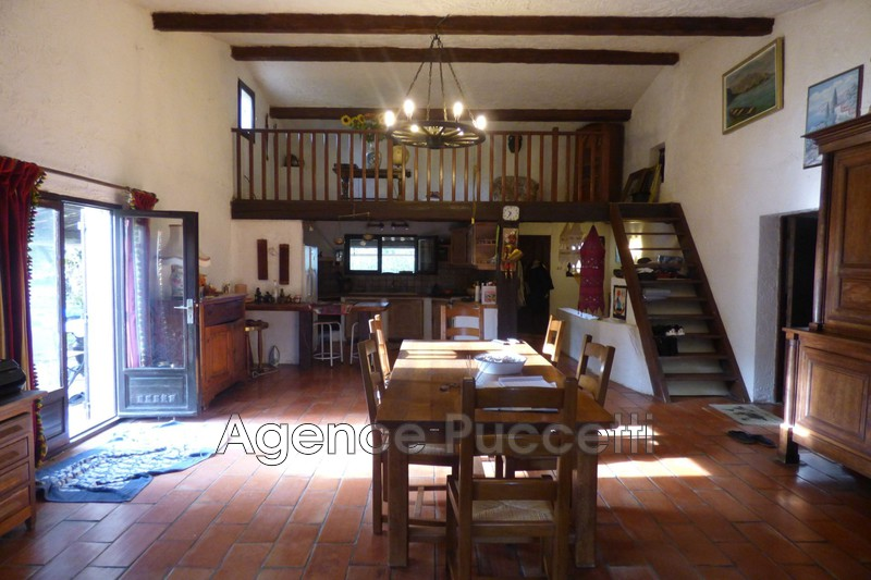 Photo Villa Saint-Jeannet Campagne,   achat villa  5 chambres   210m²