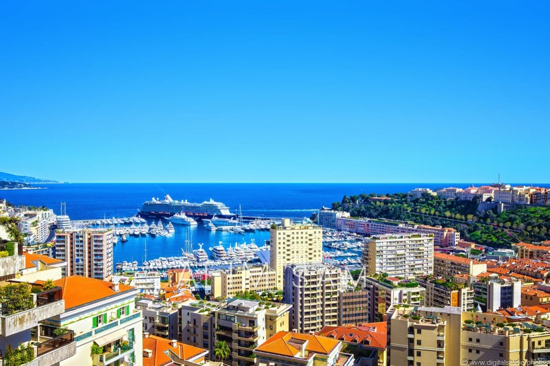 2 pièces Monaco Jardin exotique,  Rentals 2 pièces  2 rooms   131m²